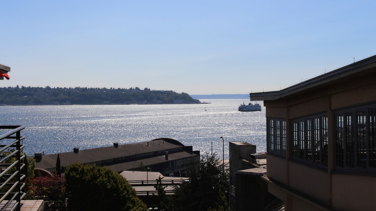 Puget Sound View